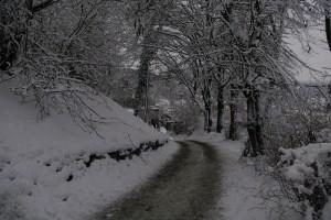 Sighisoara - Peisaj de iarna