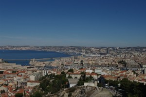 Marsilia vazuta de sus