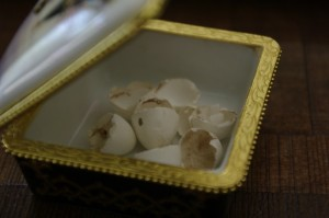 Ousoarele adunate de mine de sub cuibul lor si pastrate intr-o cutiuta