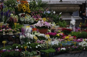 Taraba cu flori in Piazza Campo dei Fiori