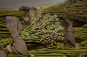 Buchetele de levantica imi aduc aminte de Provence