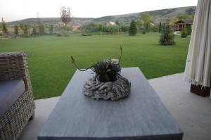Aranjamentul din lemn cu floare de care spuneam si privelistea oferita de terasa