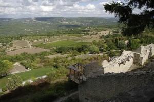 Valea vazuta de sus, de pe ruine