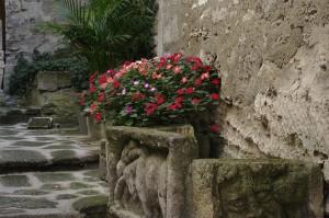 Toate casele te intampina cu flori