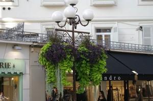 Aranjament bicolor pe Rue de Paradis