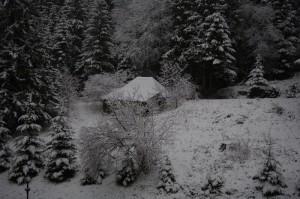 Prima zapada din Poiana Brasov