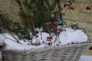 Culorile iernii