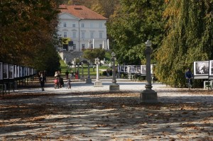 Parcul - padure al orasului