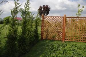 Pentru imprejmuire, pe o parte a gradinii am pus un grilaj din lemn
