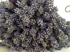 Miros de Provence la mine, la Cheia