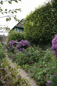 Florile toamnei impodobeau aleile gradinii