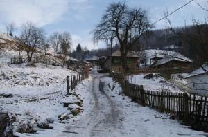 Ulita din satul Barsana