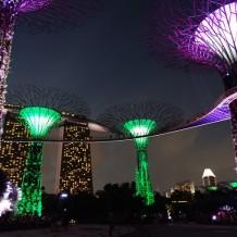 Singapore – Marina Bay Gardens
