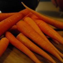 Cum se cultiva morcovii