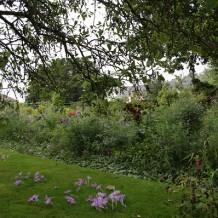 Casa si gradina lui Claude Monet de la Giverny